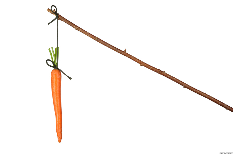 carrot and stick theory Motivation - the 'stick and carrot' way introduction all organisations use a variety of motivational tools and techniques to motivate their employees.